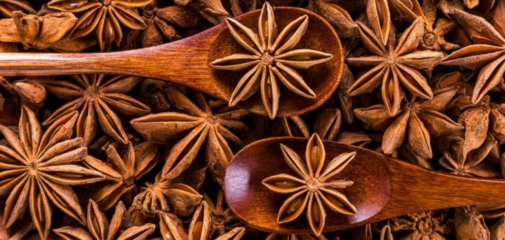 What Does Anise Taste Like